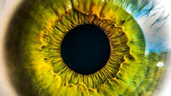 Oog iris groen